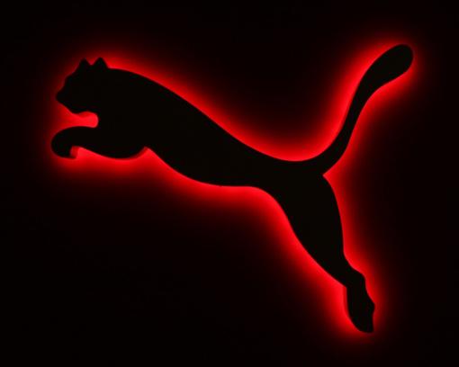 Comptes environnementaux : le cas de Puma