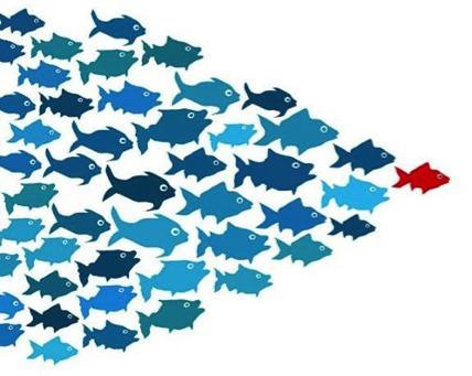 Faire confiance aux leaders
